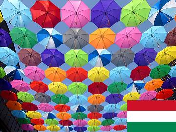 ハンガリー語 集中レッスン