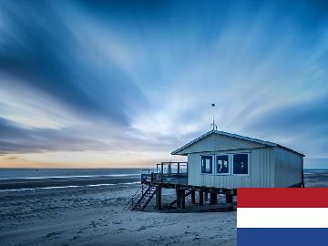 オランダ語 集中