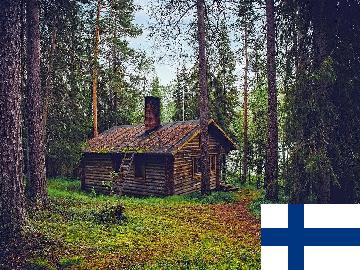 一般的 フィンランド語