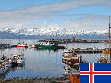 アイスランド語 出張レッスン