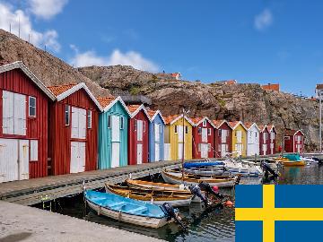 一般的 スウェーデン語