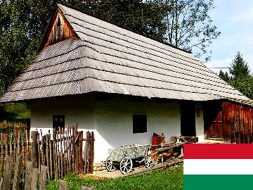 ハンガリー語 出張レッスン